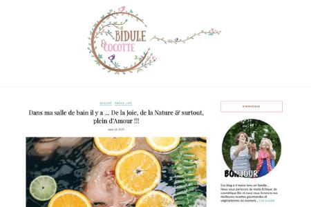 Retombée presse - blog Bidule et Cocotte