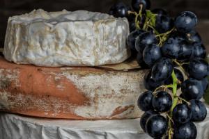 7 différences entre un fromage bio et un fromage classique