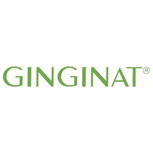 logo-ginginat
